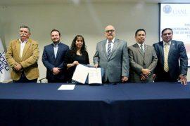 UANL ofrecerá equinoterapia