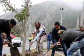 Inicia Santa Catarina Agenda Ambiental 2019 con siembra de árbol de grandes dimensiones en La Huasteca